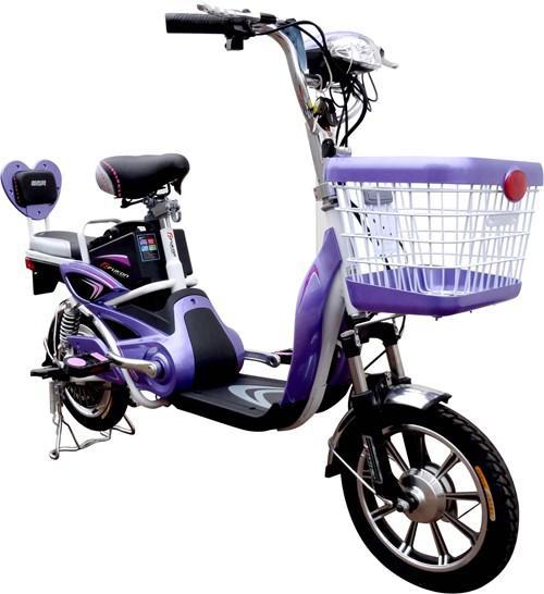 Xe đạp điện Parkson vành đúc DL-01