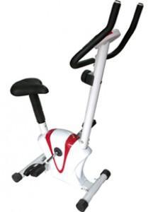 Xe đạp Cố định Nhỏ Life 608 LIFE-608