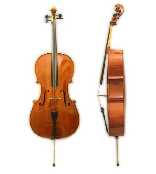 Dan Scottcao Cello STC017