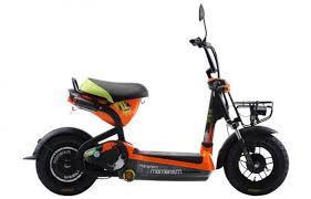 Xe đạp điện GIANT 133M