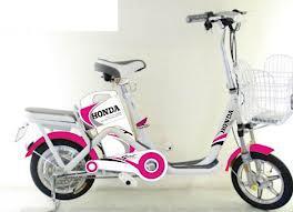 Xe đạp điện Honda H-102
