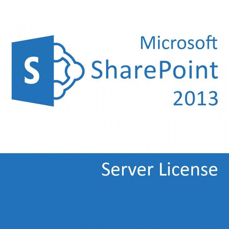 SharePointSvr 2013 SNGL OLP NL 76P-01501