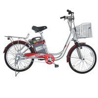 Xe đạp điện Giant 311