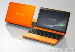Sony Vaio VPC-CA35FG/D