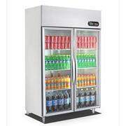 Tủ đông Sanaky VH-1099K 950L