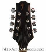 Electric Mandolin M-5