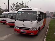 Hyundai Limousine, Đáp ứng mọi yêu cầu khách hàng