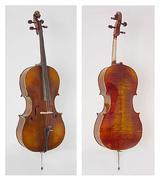 Scottcao Cello STC600
