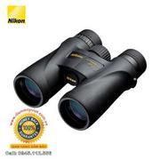 Ống nhòm Nikon 10x42 Monarch 5 Binocular (Black)