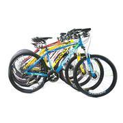 Xe đạp địa hình MTB300 - M300