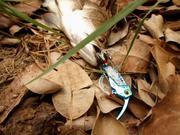 Mồi Giả Câu Cá GT-BiO Cicada 15g
