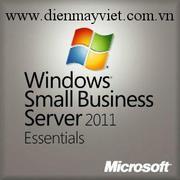 Win Small Bus Svr Essntls 2011 64bit English 1pk DSP OEI CD/DVD 1-2CPU (2VG-00202)