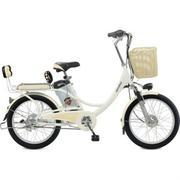 Xe đạp điện Geoby 2010 V4