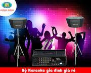 Dàn Karaoke gia đình giá rẻ HA-17