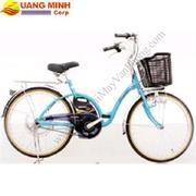 Xe đạp điện NISHIKI - N24