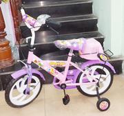 Xe đạp Nhựa Chợ Lớn 14'' (gái)