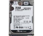 WD HDD Black 250GB 2.5