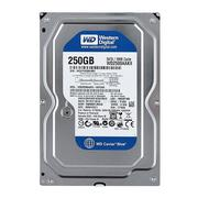 Ổ cứng HDD WD Caviar Blue WD2500AAKX 250GB
