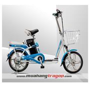 Xe đạp điiện AIMA ED315E