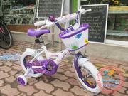 Xe đạp trẻ em DECH 1339 12