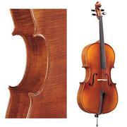 Pearl River Cello C035