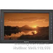 Sony LMD-1751W 17