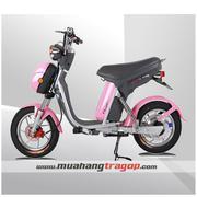 Xe đạp điện NIJIA Nhập Khẩu