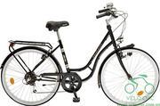 Xe đạp Peugeot LC-21