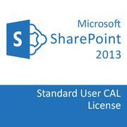 SharePointEntCAL 2013 SNGL OLP NL UsrCAL 76N-03701
