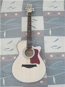 Monica Acoustic Guitar 4022CN