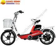 Xe đạp điện Yamaha YDC-H2