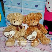 Gấu bông ôm trái tim đôi TNB-20