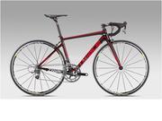 Xe đạp Carbon TRIACE KS320